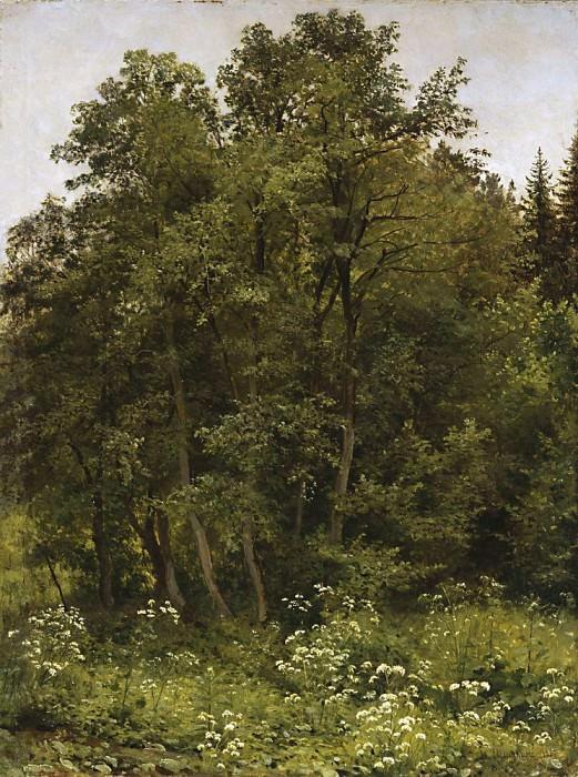 На опушке 1885 70. 8х53. Иван Иванович Шишкин