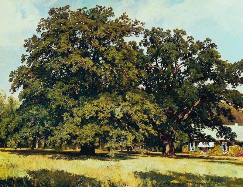 Mordvinovskie oaks 1891 84h111. Ivan Ivanovich Shishkin
