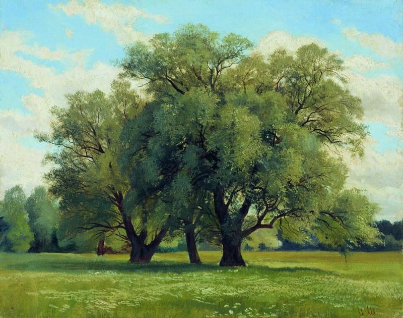 Dubky 28, 5h35. Ivan Ivanovich Shishkin