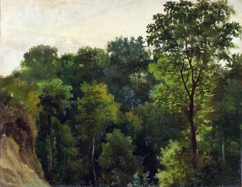 Jean-Michel Cels - Tree study. Part 4 National Gallery UK