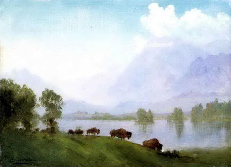 Bierstadt Albert Buffalo Country. Albert Bierstadt