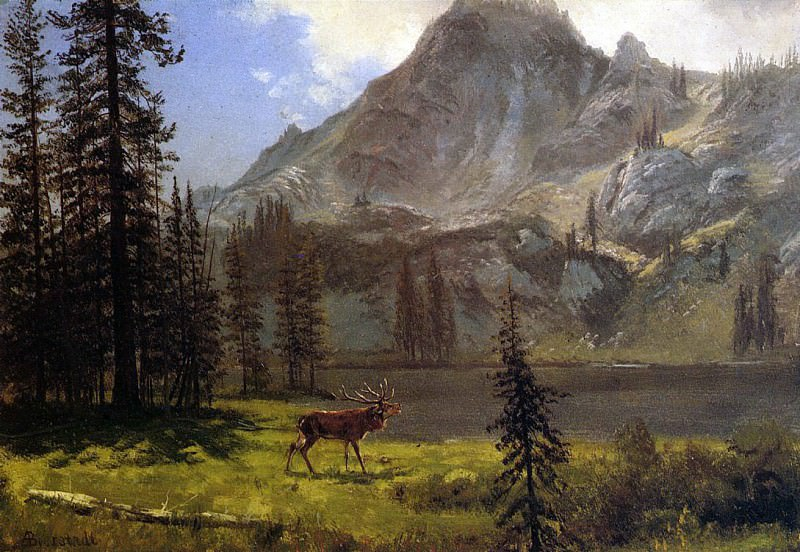 Bierstadt Albert Call of the Wild. Albert Bierstadt