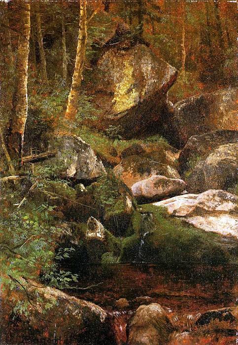 Лесной ручей. Альберт Бирштадт