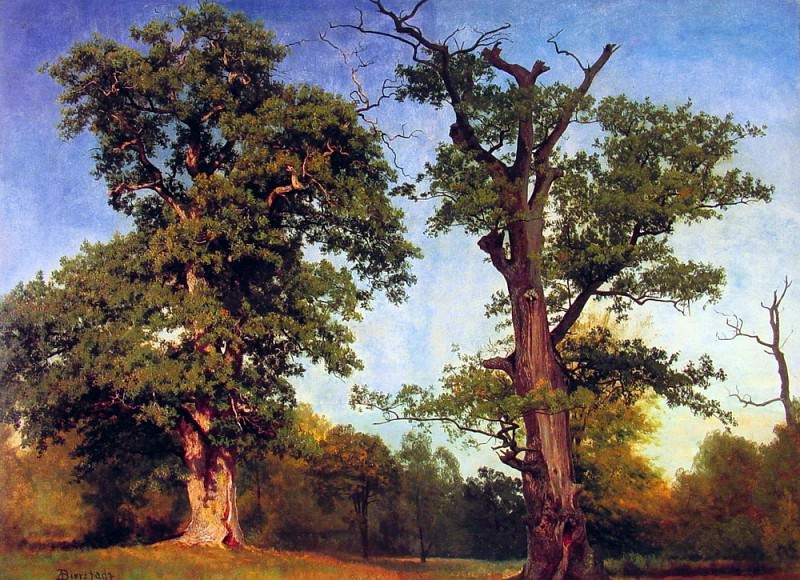 Pioneers of the Woods. Albert Bierstadt