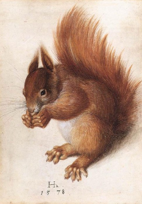HOFFMANN Hans Squirrel. Немецкие художники