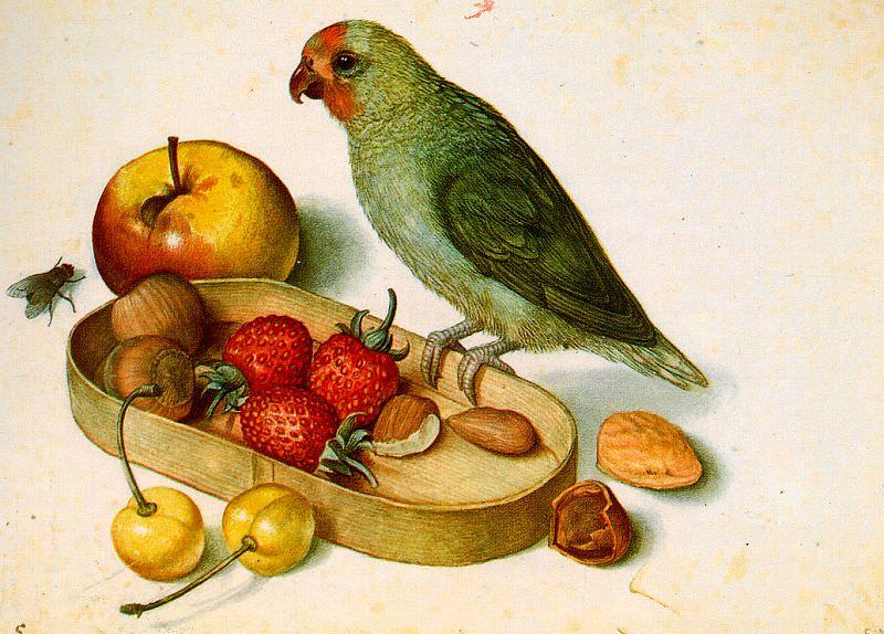 Flegel, Georg (German, 1566-1638) 4. German artists