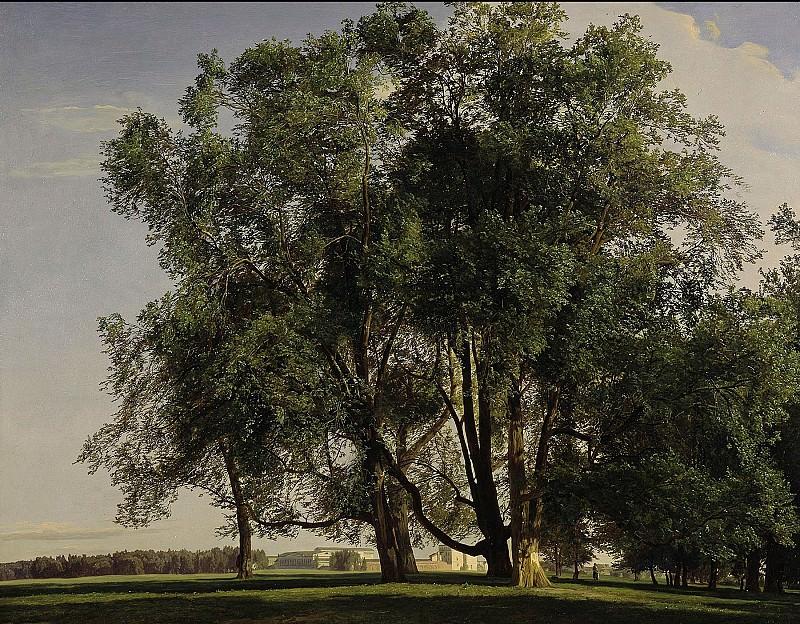 Вальдмюллер, Фердинанд Георг (1793 - 1865) - Пейзаж близ Пратера. Старая и Новая Национальные Галереи (Берлин)