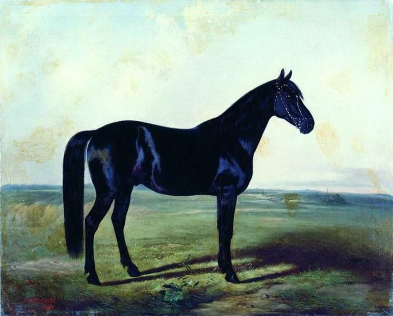 Черная лошадь. Nikolay Sverchkov