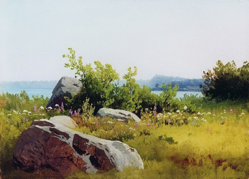 Летние травы. 1890-е. Арсений Мещерский