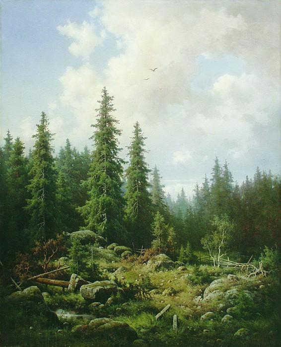 Пейзаж с елями. 1860-е. Арсений Мещерский
