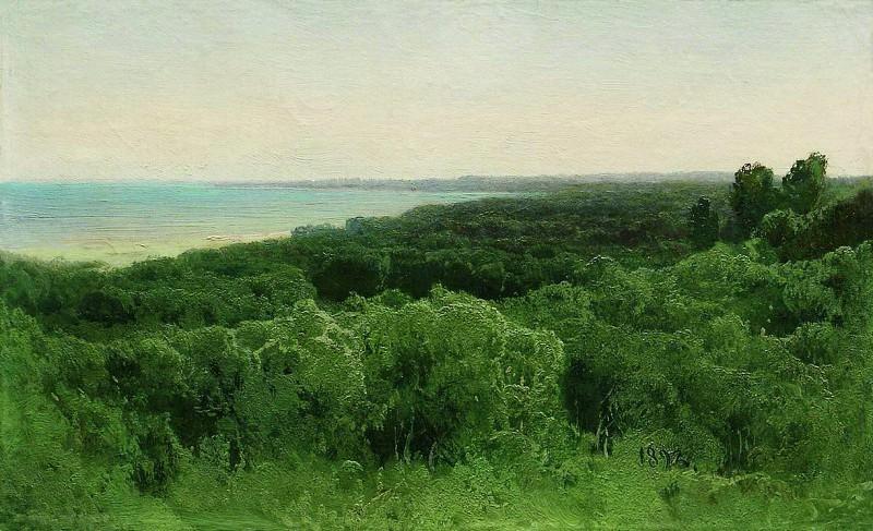 Лесные дали. 1896. Arseny Meshersky