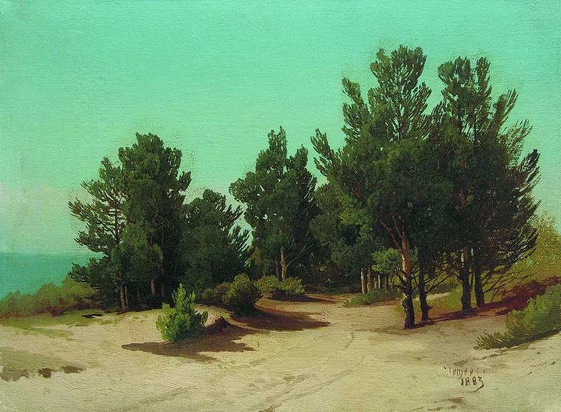 На берегу. Солнечный день. 1883. Арсений Мещерский