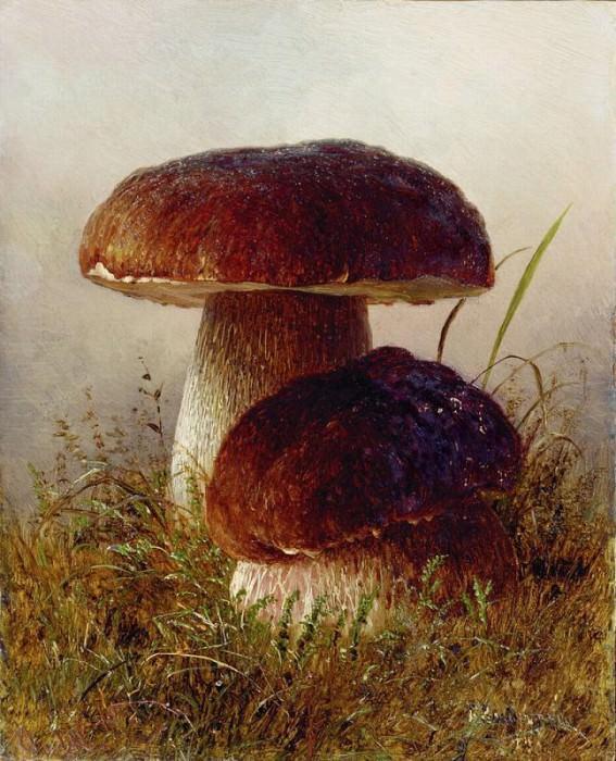 Белые грибы Этюд Картон масло 202 x 162 Николаев. Gavriil Kondratenko