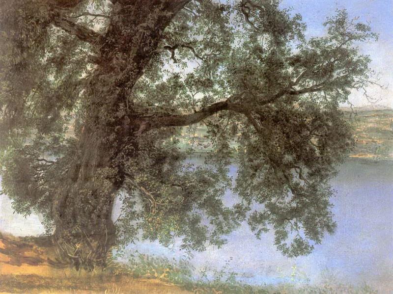 Дерево в тени над водой в окрестностях Кастель-Гандольфо. Конец 1840-х-начало 1850-х. Alexander Ivanov