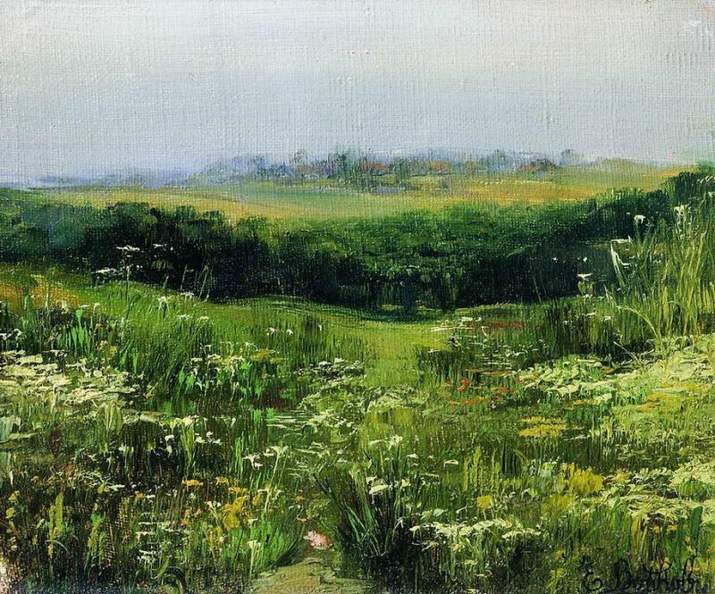 Цветочное поле. Efim Volkov