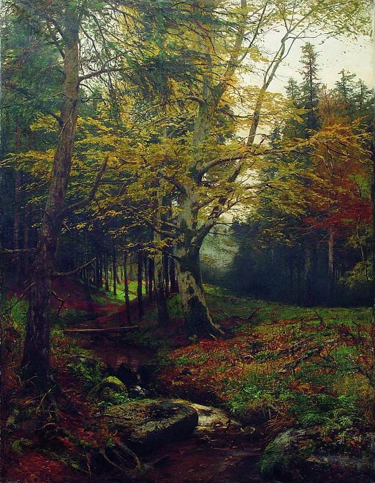Ручей в лесу. 1900-е. Efim Volkov