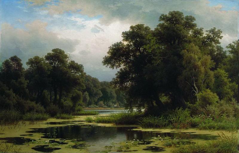 Заросший пруд. 1880-e. Efim Volkov