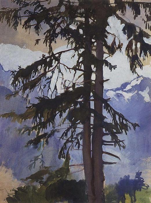 The spruce. Zinaida Serebryakova