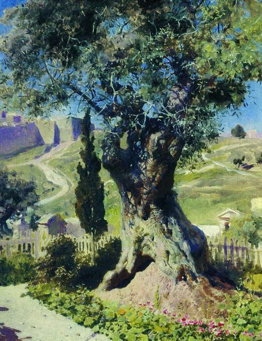 Олива в Гефсиманском саду. 1882. Василий Дмитриевич Поленов