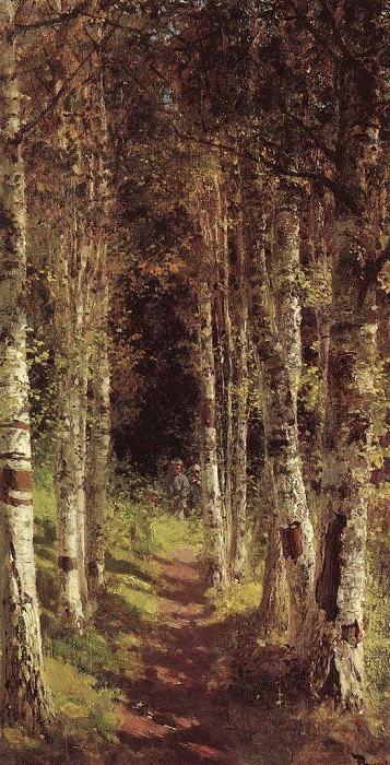 Березовая аллея в Абрамцеве. 1880. Василий Дмитриевич Поленов