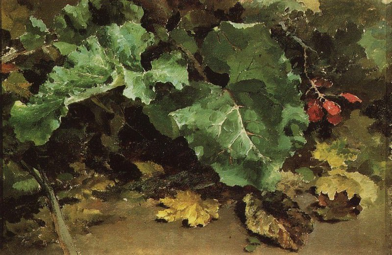 Лопухи. 1870-е. Василий Дмитриевич Поленов