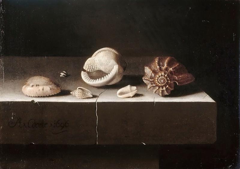 Adriaen Coorte -- Six shells on a stone slab. Part 5 Louvre