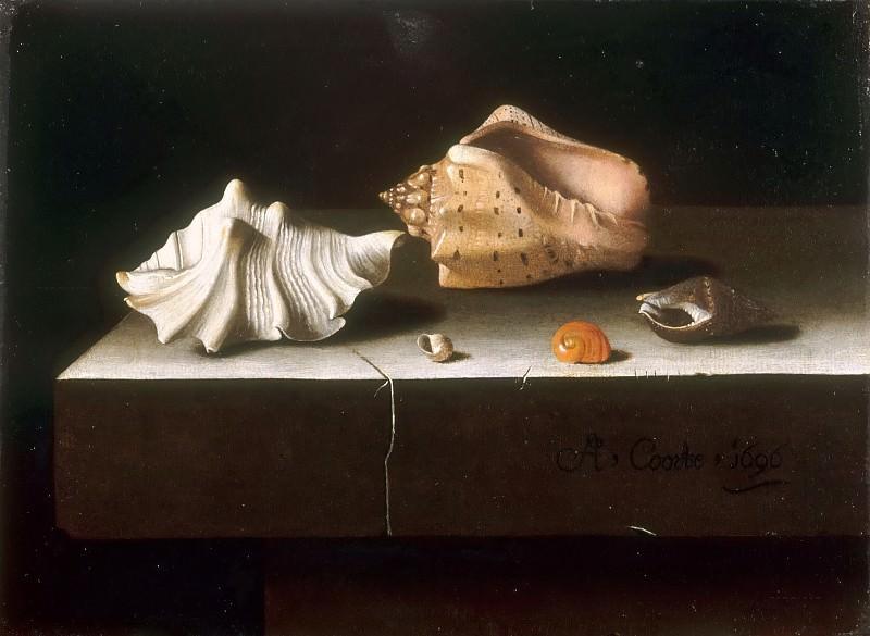 Adriaen Coorte -- Five shells on a stone slab. Part 5 Louvre