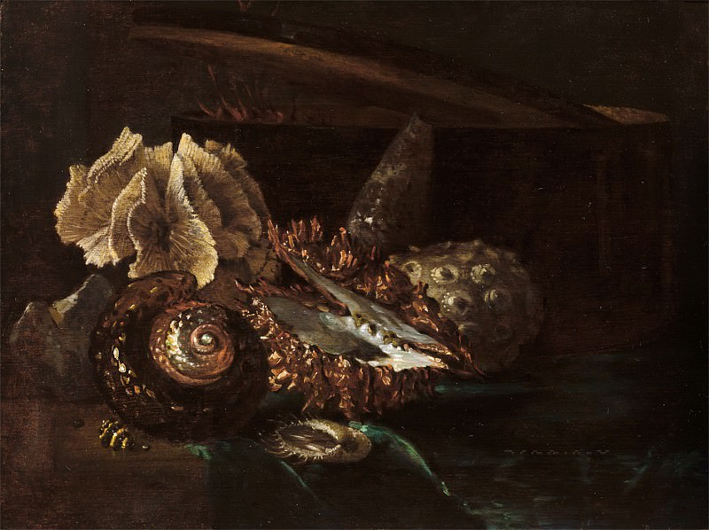 Willem Kalf - Still Life with Shells and Coral. Mauritshuis