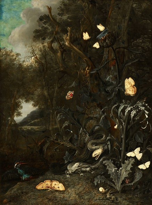 Otto Marseus van Schrieck - Plants and Insects. Mauritshuis