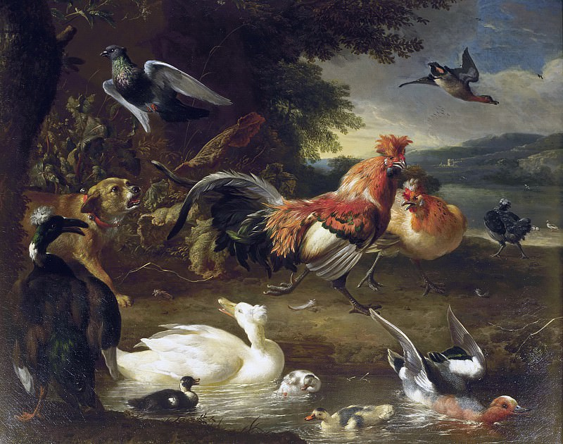 Melchior d' Hondecoeter - Chickens and Ducks. Mauritshuis