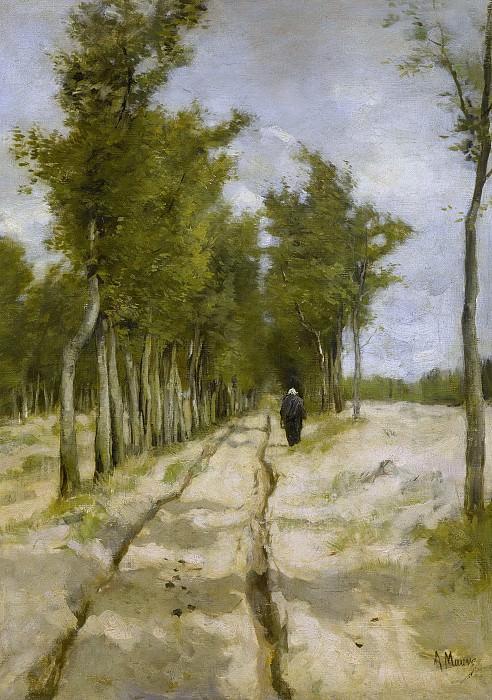 Антон Мауве -- Аллея, ведущая к колокольне Ларена, 1886. Рейксмузеум: часть 3