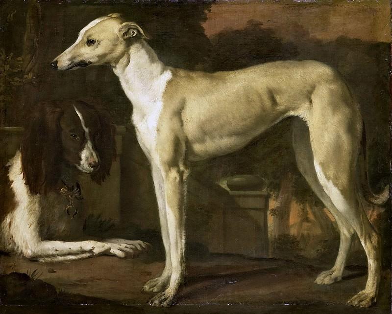 Weenix, Jan -- Portret van een hazewindhond en een patrijshond, 1665-1680. Rijksmuseum: part 3