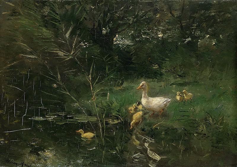 Виллем Марис -- Утка с утятами, 1880-1907. Рейксмузеум: часть 3