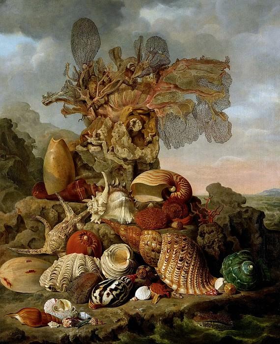 Wiertz, Henricus Franciscus -- Schelpen en zeegewassen, 1809. Rijksmuseum: part 3