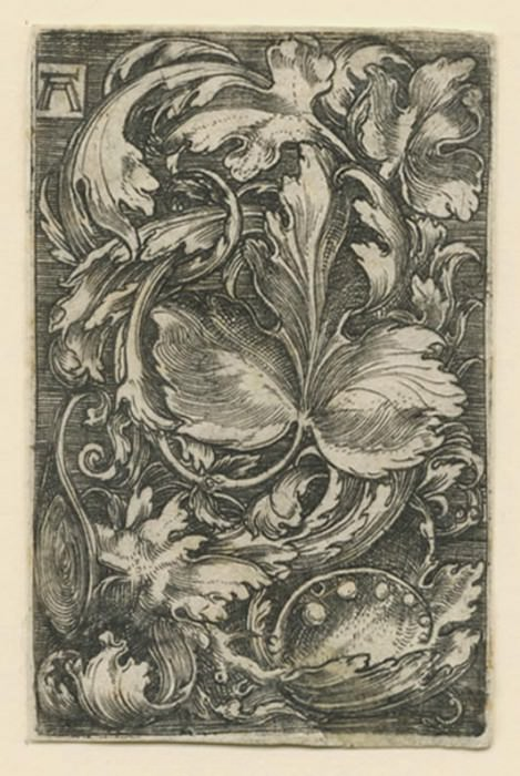 Albrecht Altdorfer Leaf Ornament with Lilies of the Valley ca 1511 15. European art; part 1