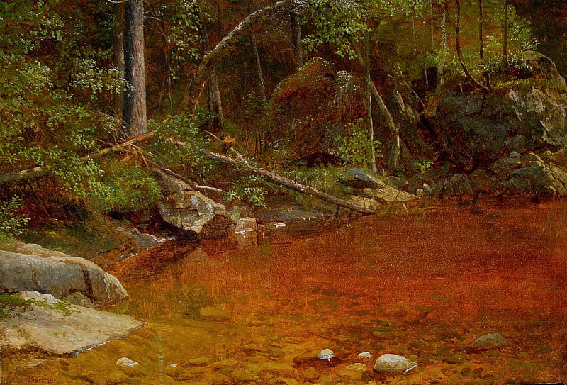 Albert Bierstadt Forest glade. European art; part 1