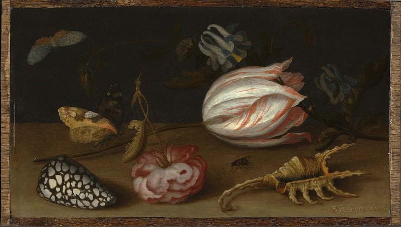 Balthasar van der Ast A Still Life with Flowers Shells and a Butterfly. European art; part 1