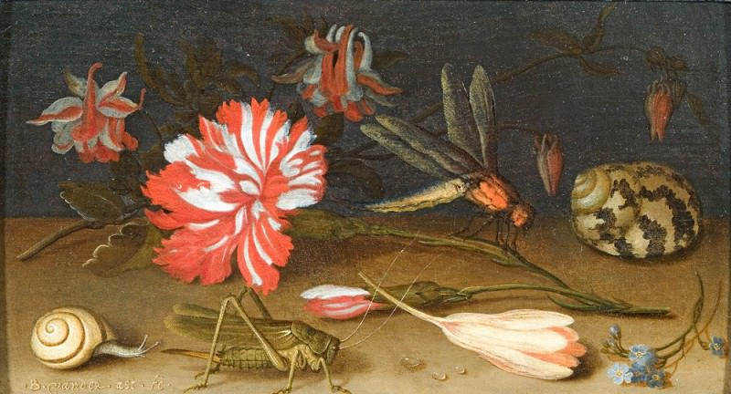 Balthasar van der Ast A Still Life with Flowers a Shell a Snail and Insects 15814 268. European art; part 1