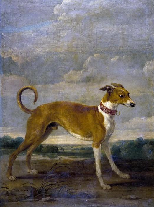 Vos, Paul de -- Un perro. Part 6 Prado Museum