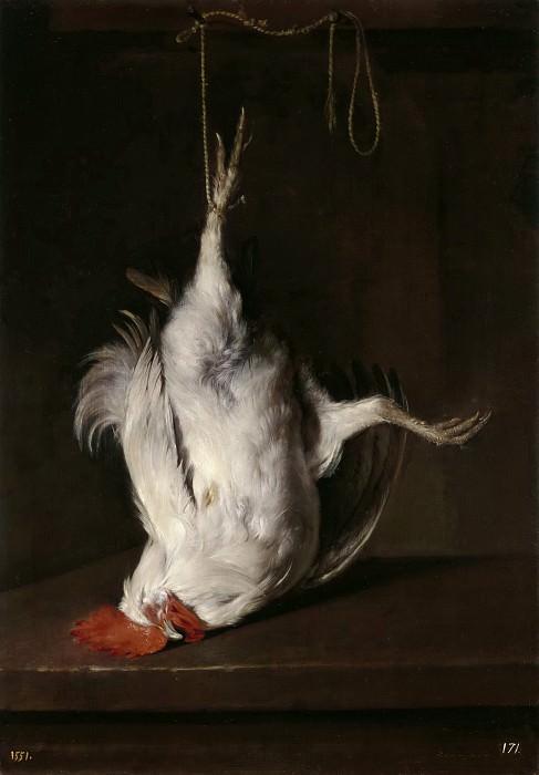 Metsu, Gabriël -- Gallo muerto. Part 6 Prado Museum