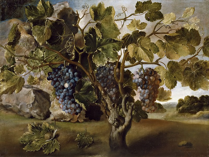 Hiepes, Tomás -- Paisaje con una vid. Part 6 Prado Museum