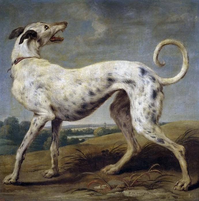 Vos, Paul de -- Un galgo blanco. Part 6 Prado Museum