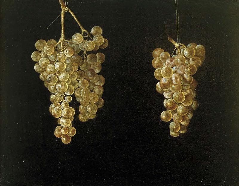 Fernández el Labrador, Juan -- Dos racimos de uvas colgando con mosca. Part 6 Prado Museum