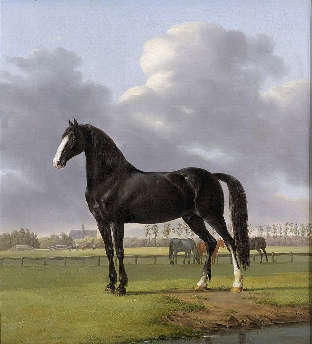 Oberman, Anthony -- De harddraver 'de Vlugge' van Adriaan van der Hoop in de weide, 1828. Rijksmuseum: part 4