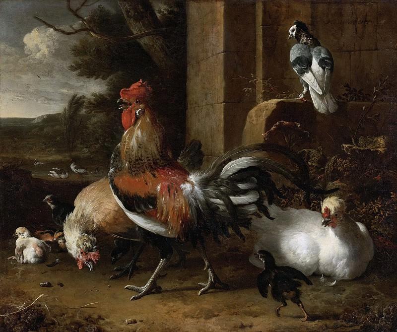 Hondecoeter, Melchior d -- Hoenderhof, 1660-1665. Rijksmuseum: part 4