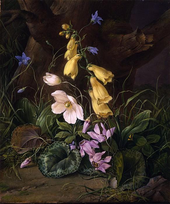 FRANZ XAVIER PETTER Wildflowers at the base of a tree 29660 172. часть 2 - европейского искусства Европейская живопись
