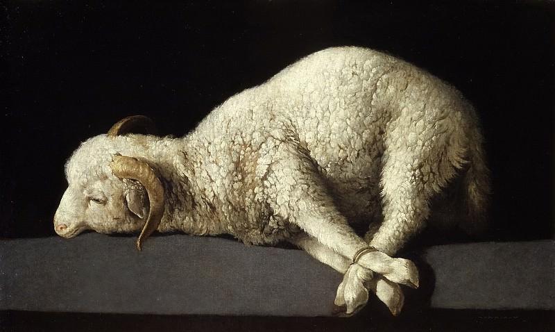 Сурбаран, Франсиско де -- Агнец Божий. часть 5 Музей Прадо