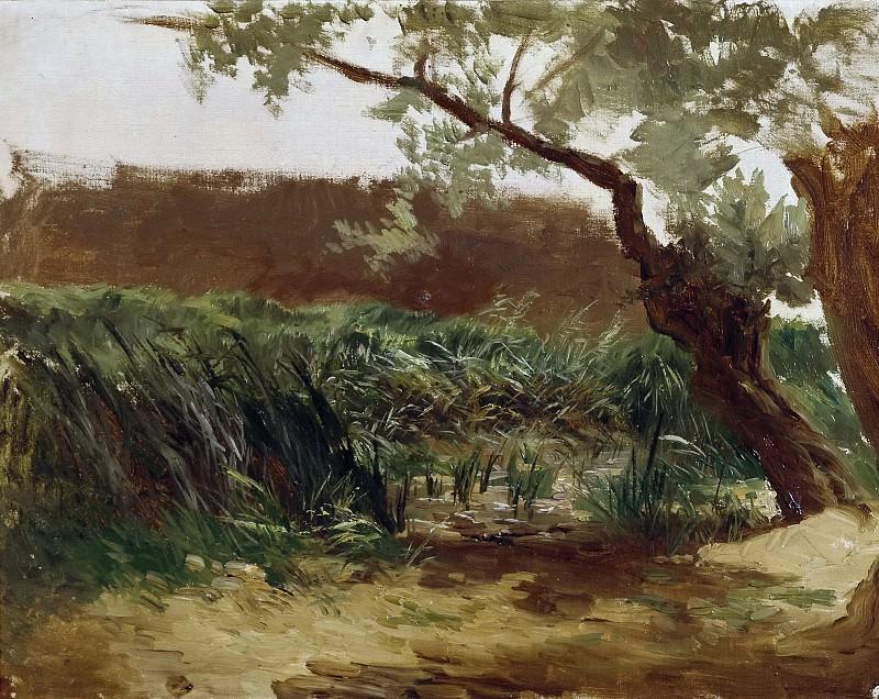 Haes, Carlos de -- Espadañas (Piedra). Part 5 Prado Museum