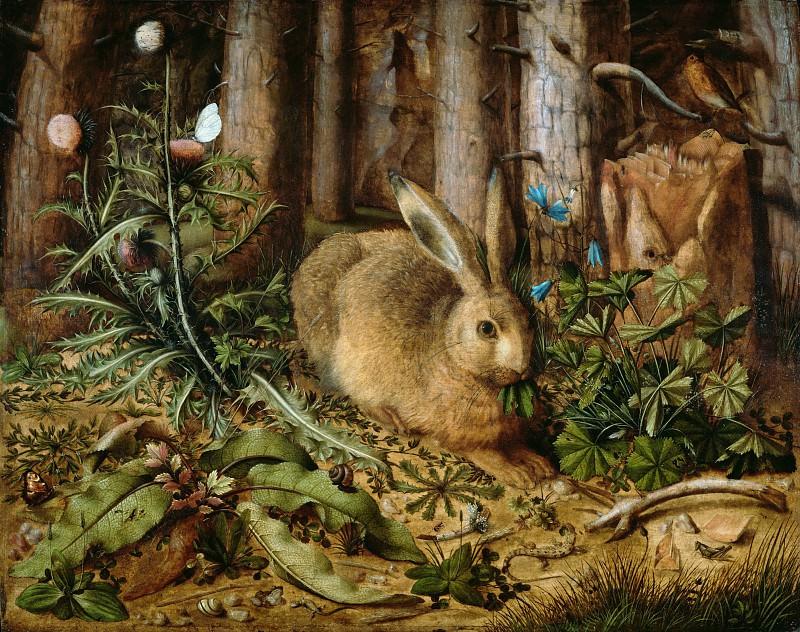 Хоффманн Ганс (ок1530 Нюрнберг - ок1591 Прага) - Заяц в лесу (62х75 см) ок1585. J. Paul Getty Museum