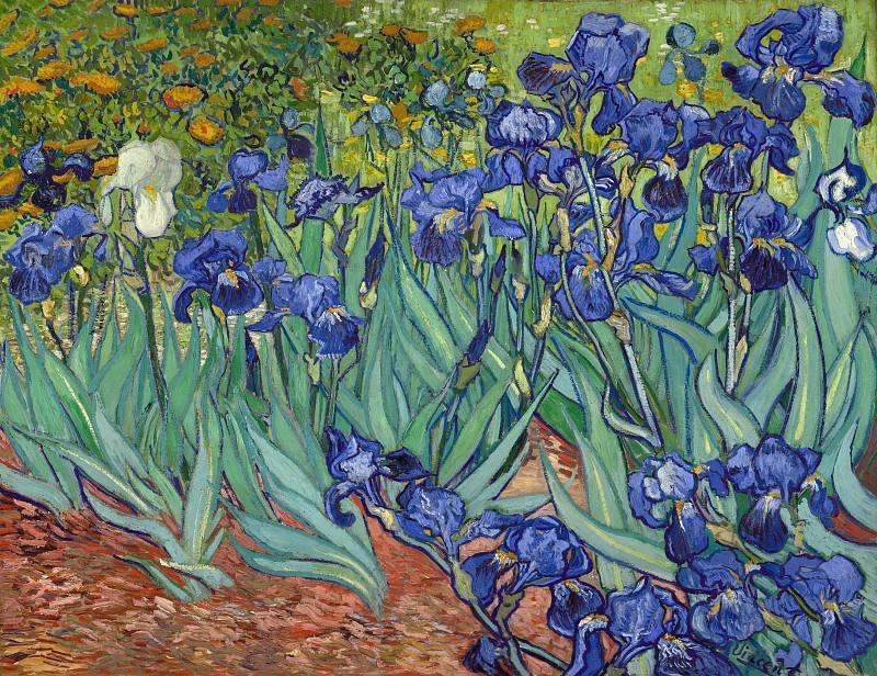 Гог Винсент ван (1853 Зюндерт близ Бреды - 1980 Овер-сюр-Уаз) - Ирисы (95х115 см) 1889. Музей Гетти